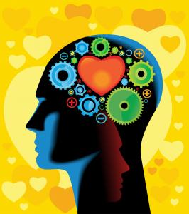 whole brain training