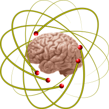 neuroplasticity and neurofeedback
