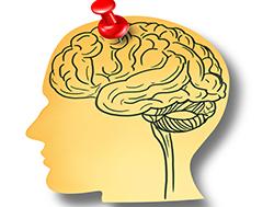brain-regain-memory